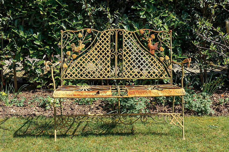 Weathered garden bench besides a hedge on a garden lawn by Paul Phillips for Stocksy United