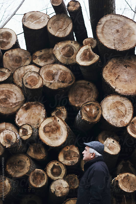 Man standing near woodpile on a foggy morning by Jovana Rikalo for Stocksy United