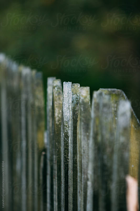 Rustic outdoors wooden fence by Leandro Crespi for Stocksy United