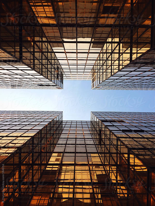 Looking up at Golden Buildings by B. Harvey for Stocksy United