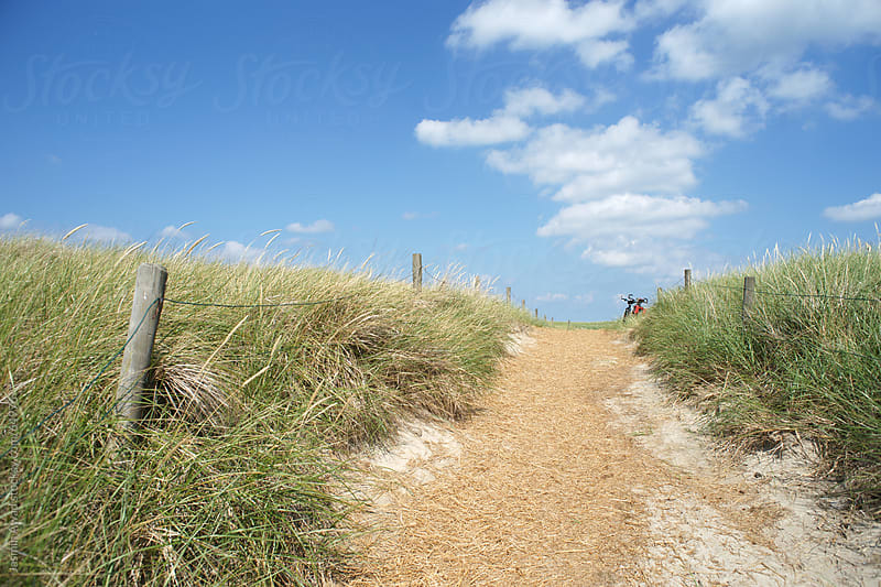 Summer Path in the Dunes, Island Juist Germany by Jasmin Awad for Stocksy United