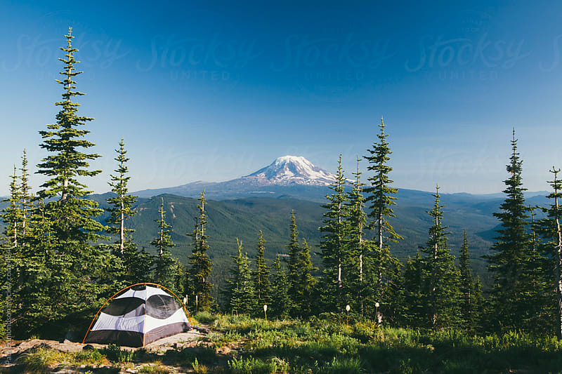 Camping tent in alpine meadow, overlooking lush forest, Mt. Adams in distance by Paul Edmondson for Stocksy United