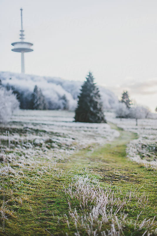 a grass path in a winter landscape by Christian Zielecki for Stocksy United