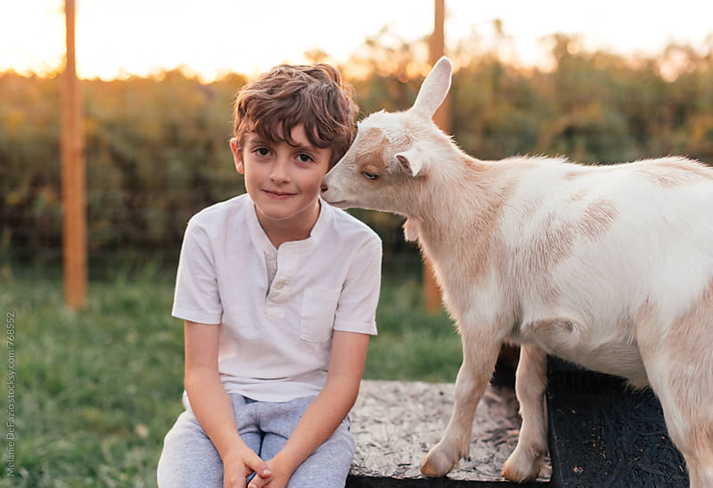Boy and goats by Melanie DeFazio for Stocksy United