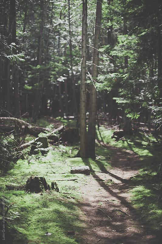 Cinnemousun Narrows Provincial Park by Luke Gram for Stocksy United