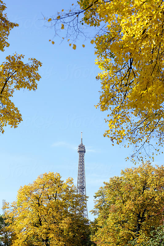 Eiffel tower in fall by Marcel for Stocksy United