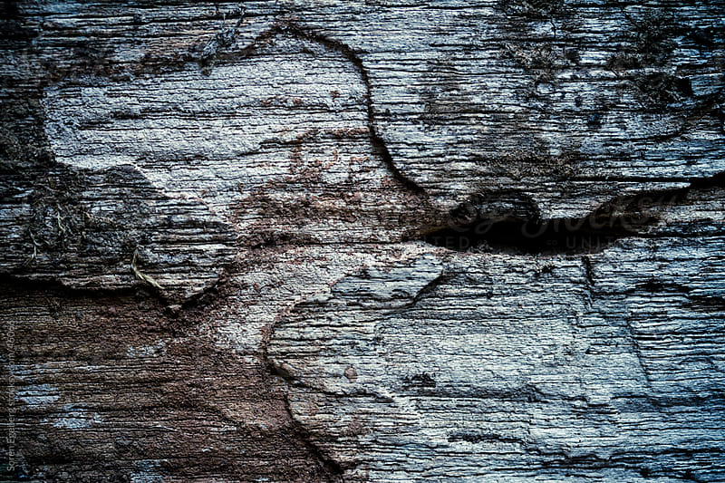 Textured background of old wooden wall on tropical bungalow in close-up by Soren Egeberg for Stocksy United