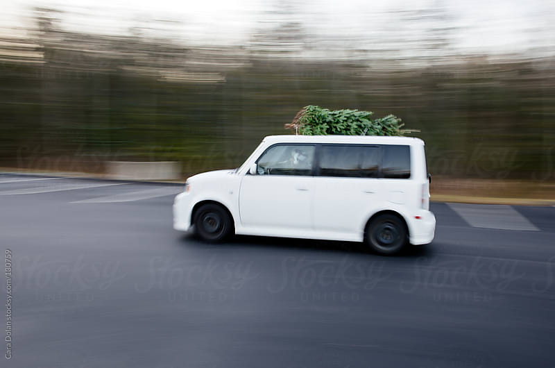 Man wearing Santa hat drives a car with a Christmas tree on top by Cara Dolan for Stocksy United