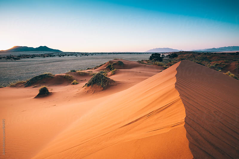 Sand dune landscape of the Namib Desert by Micky Wiswedel for Stocksy United
