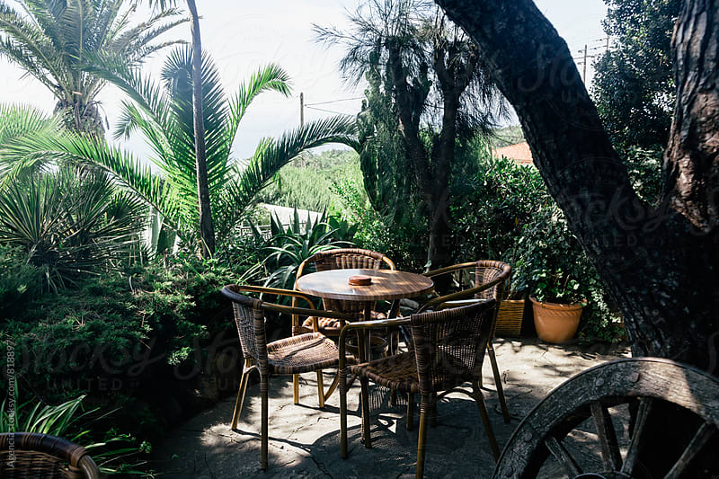 Paradise Cafe by Agencia for Stocksy United