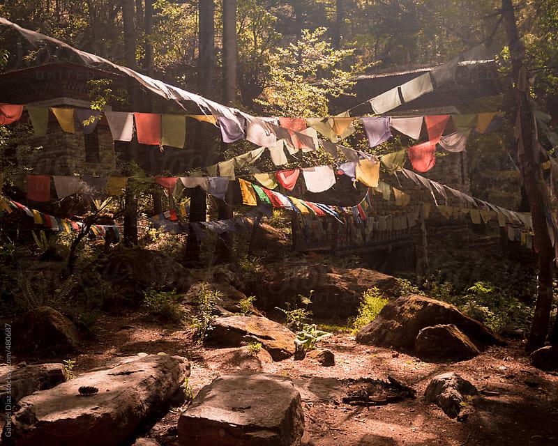 Prayer Flags on the way to Taktshang- Tigers Nest Monastery , Bhutan. by Gabriel Diaz for Stocksy United
