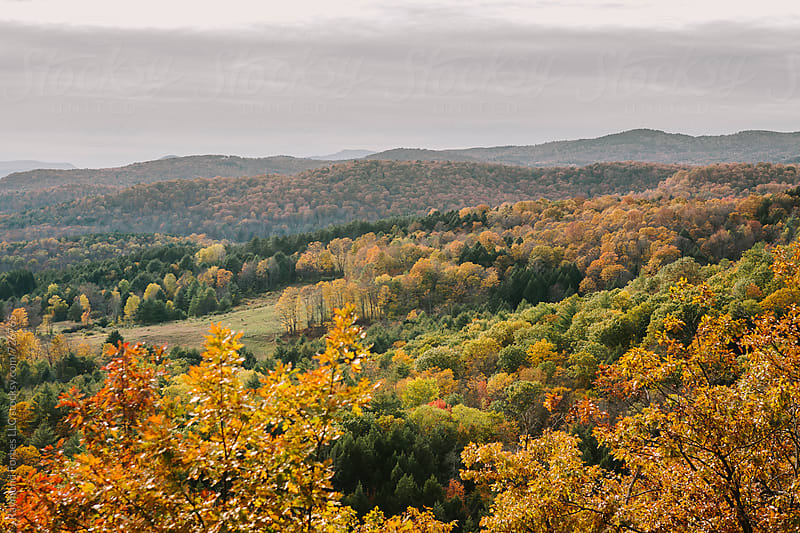 Autumn Foliage in Vermont by Raymond Forbes LLC for Stocksy United