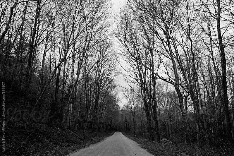 Empty road landscape by Isaiah & Taylor Photography for Stocksy United