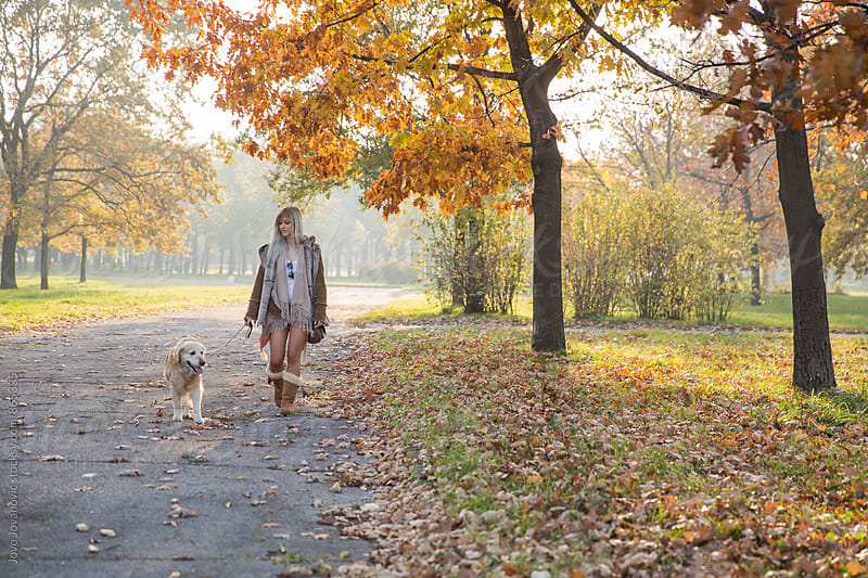 Beautiful blonde woman walking her golden retriever in the park  by Jovo Jovanovic for Stocksy United