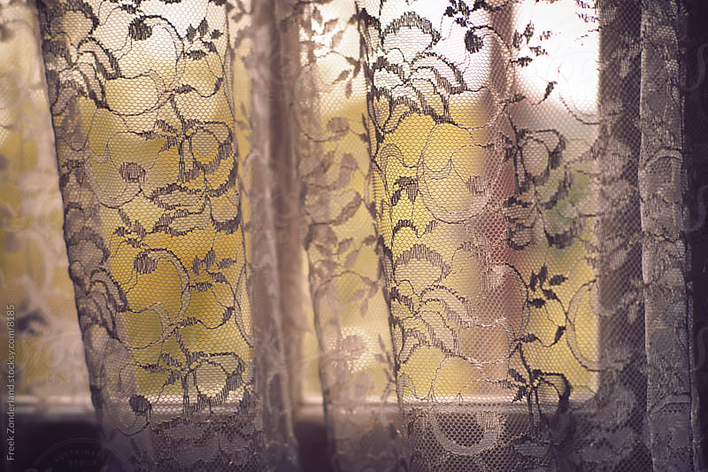 Curtain of Flowers by Freek Zonderland for Stocksy United