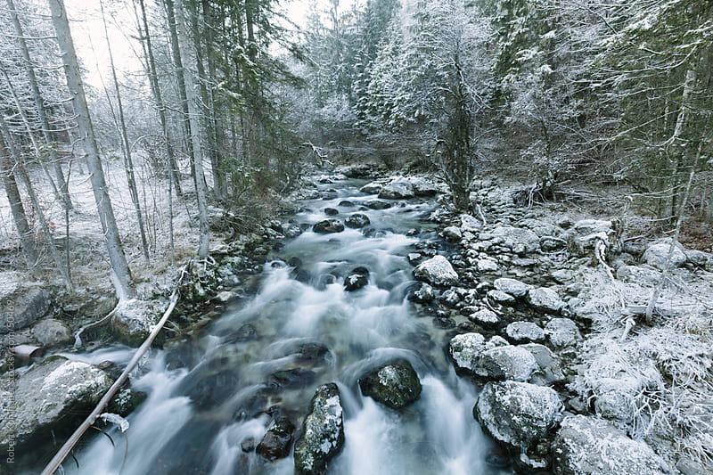 Winter river in frozen landscape by Robert Kohlhuber for Stocksy United