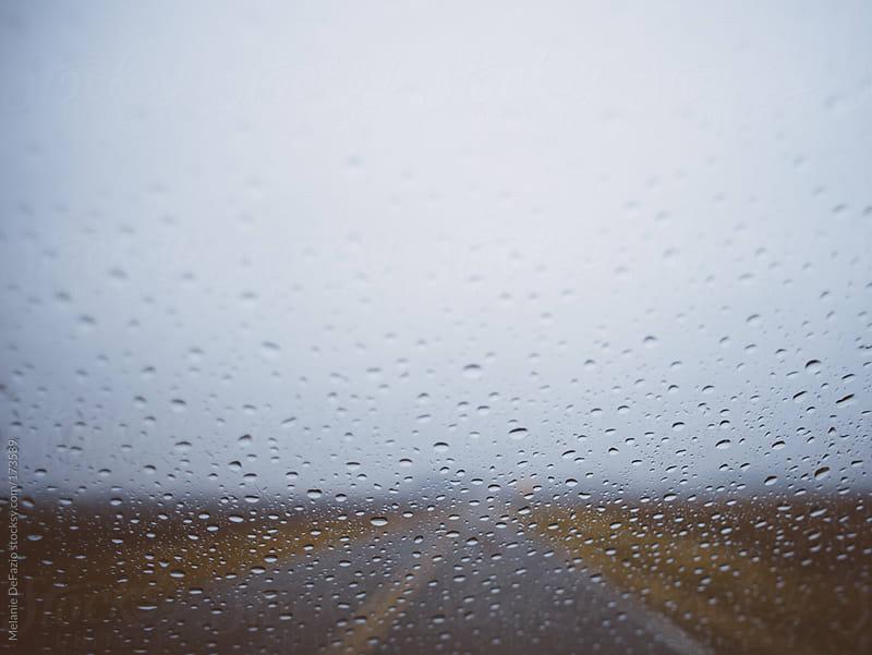 Rain Drops by Melanie DeFazio for Stocksy United