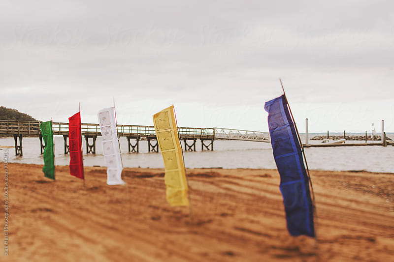 peace flags on beach by Sam Hurd Photography for Stocksy United