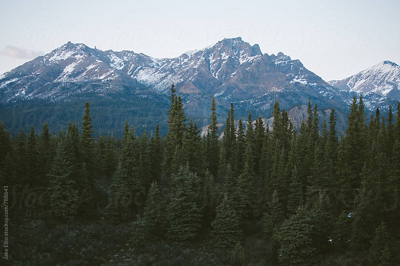 Near Denali Mountain by Jake Elko for Stocksy United