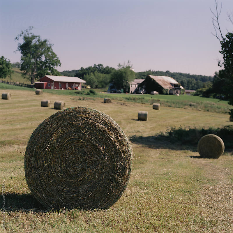 Hay bales rest on a field on a farm in the midday summer sun by Joey Pasco for Stocksy United