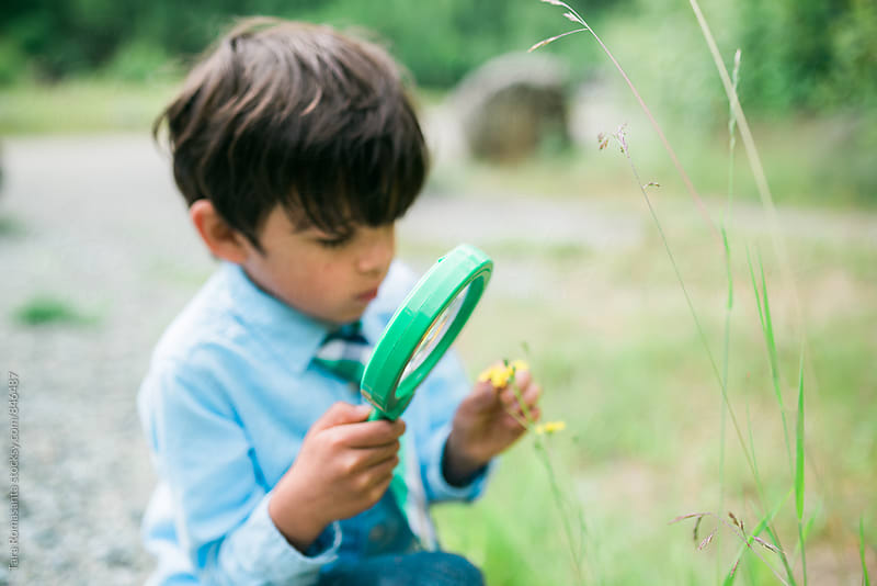young child inspecting flower with magnifying glass by Tara Romasanta for Stocksy United