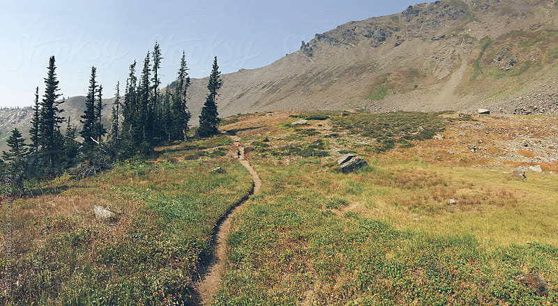 Hiking trail in mountains, Central Cascades by Paul Edmondson for Stocksy United