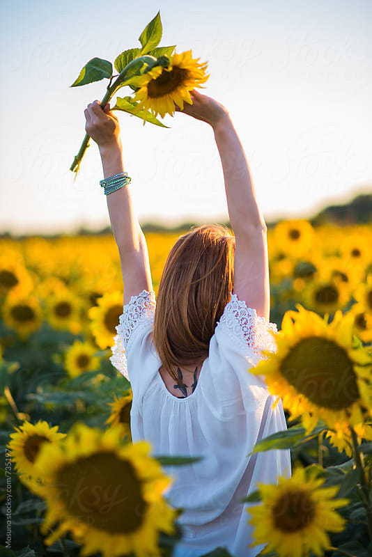 Anonymous Woman in Sunflower Field by Mosuno for Stocksy United