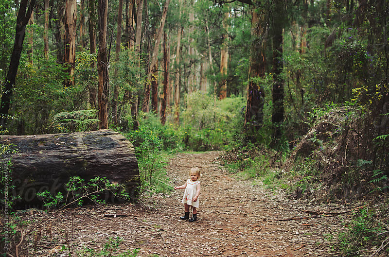 Little girl standing in forest by Dominique Chapman for Stocksy United