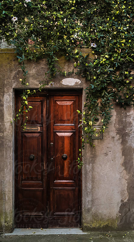 Wooden doors with liana flowers hanging on wall.Italy. by Audrey Shtecinjo for Stocksy United