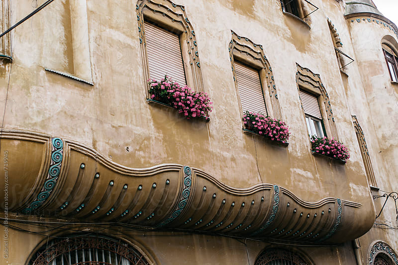 Pink flowers at the windows of an old building in Romania by Gabriel (Gabi) Bucataru for Stocksy United