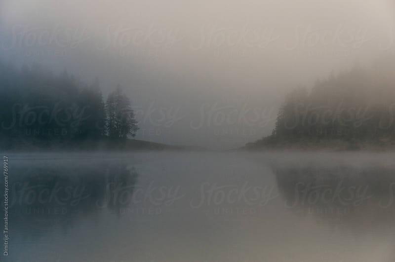 Fog above the lake in the morning by Dimitrije Tanaskovic for Stocksy United