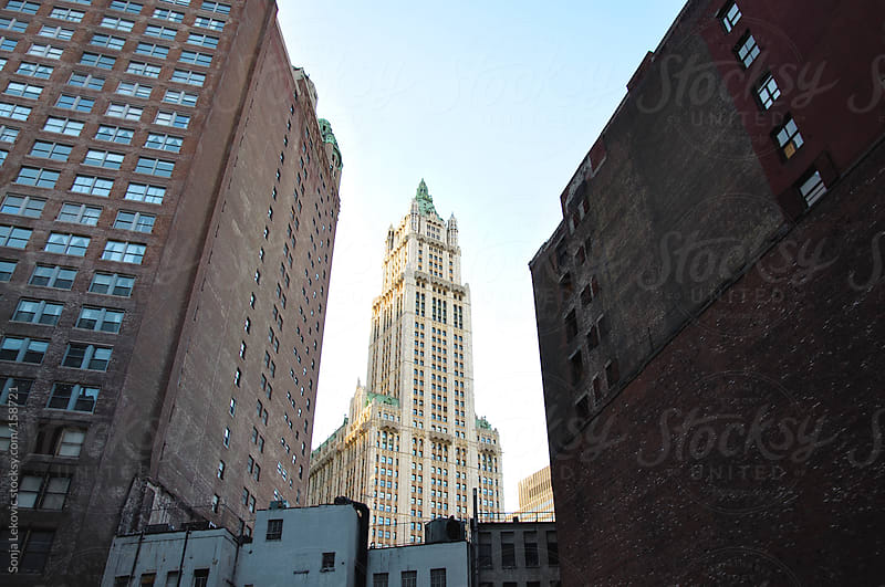 new york city architecture by Sonja Lekovic for Stocksy United
