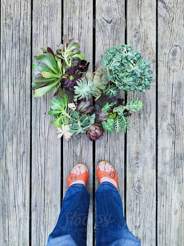 Succulent love with orange sandals by Holly Clark for Stocksy United
