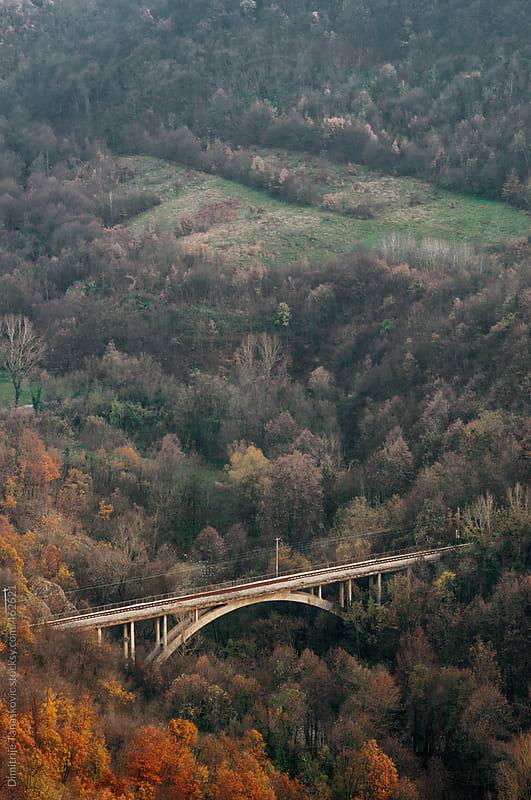 Bridge in autumn landscape by Dimitrije Tanaskovic for Stocksy United