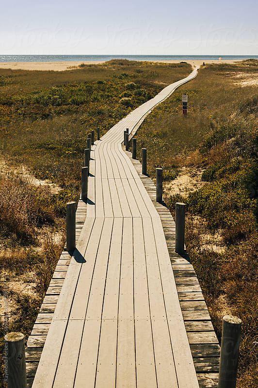 Chappaquiddick Beach Boardwalk by Raymond Forbes LLC for Stocksy United