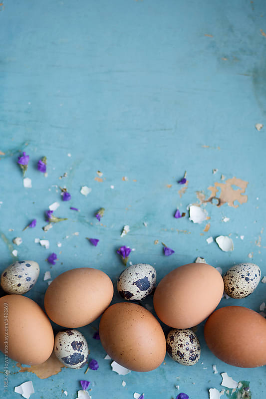 Photo of eggs on a blue table by T-REX & Flower for Stocksy United