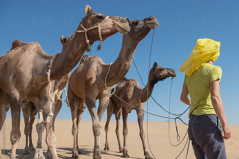 camel herder  by RG&B Images for Stocksy United