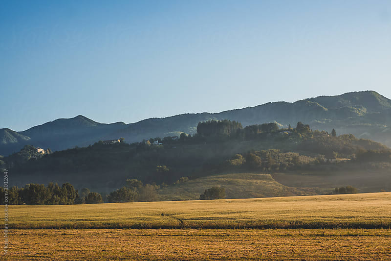 Tuscany landscape by Milena Milani for Stocksy United