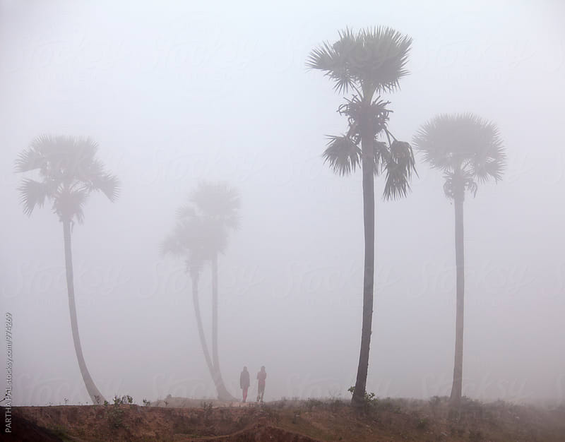 Lanndscape in the mist in Rural India by PARTHA PAL for Stocksy United