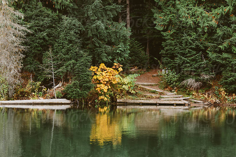 Portage trailhead along river by Justin Mullet for Stocksy United