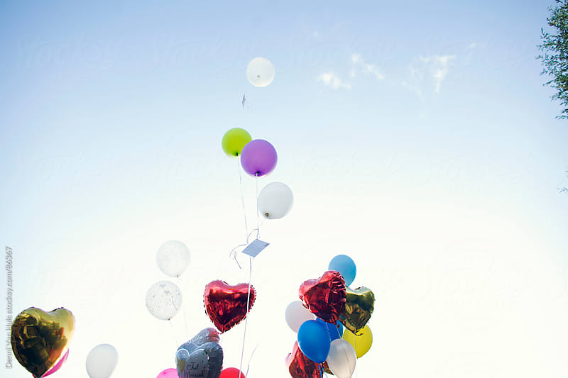 Colourful balloons flying up in the air by Denni Van Huis for Stocksy United