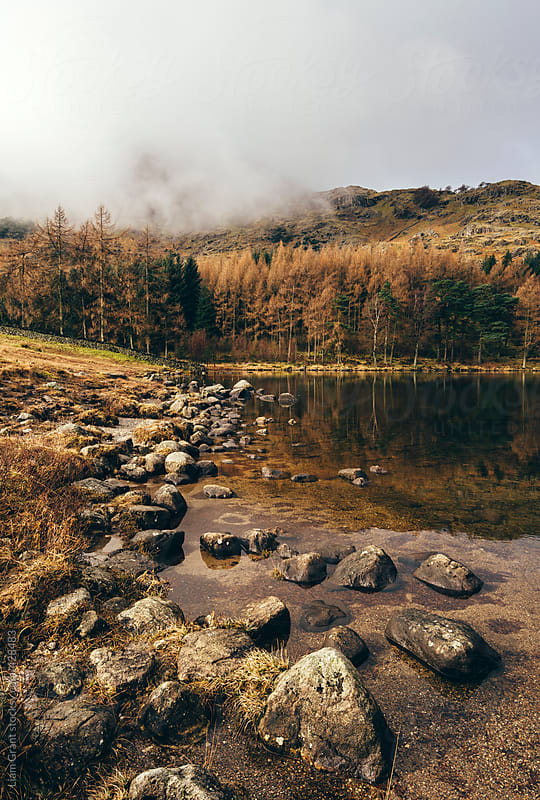 Low cloud and reflections on Blea Tarn. by Liam Grant for Stocksy United