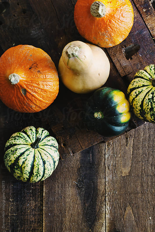 Pumpkins on wood background. by Darren Muir for Stocksy United