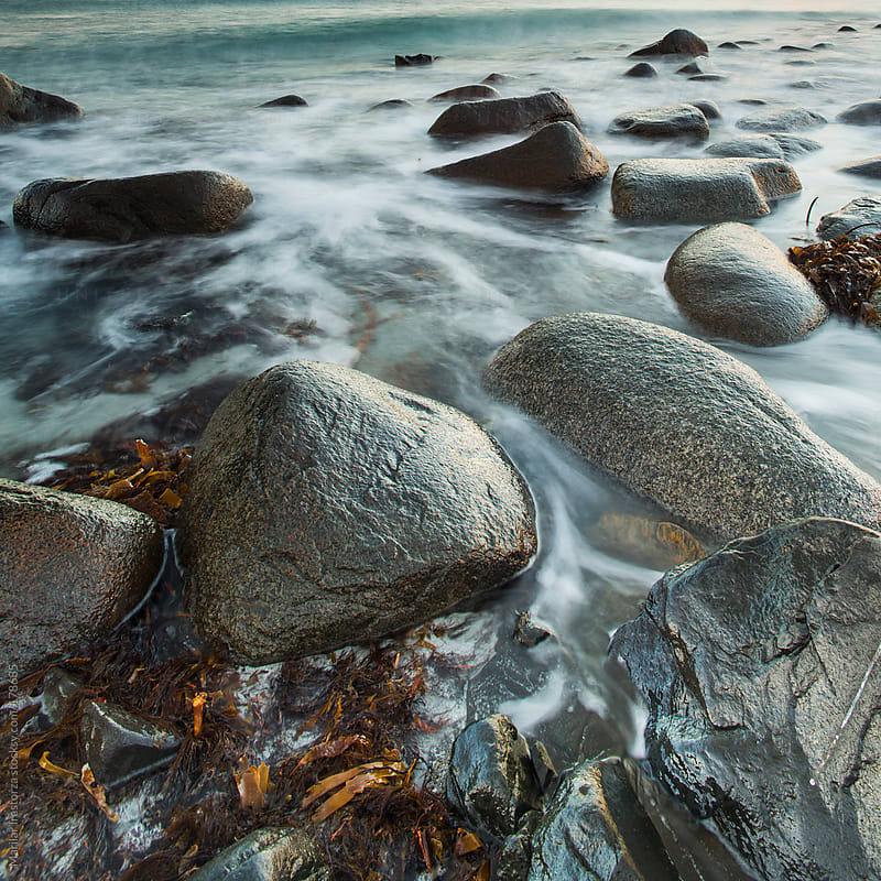 Stones & Sea Wrack by Marilar Irastorza for Stocksy United