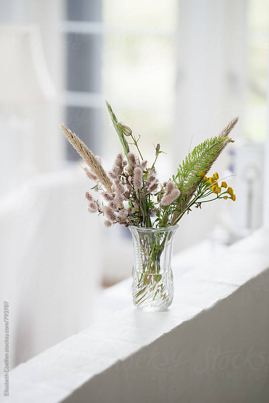 Bouquet of wild flowers picked in the dunes by Elisabeth Coelfen for Stocksy United