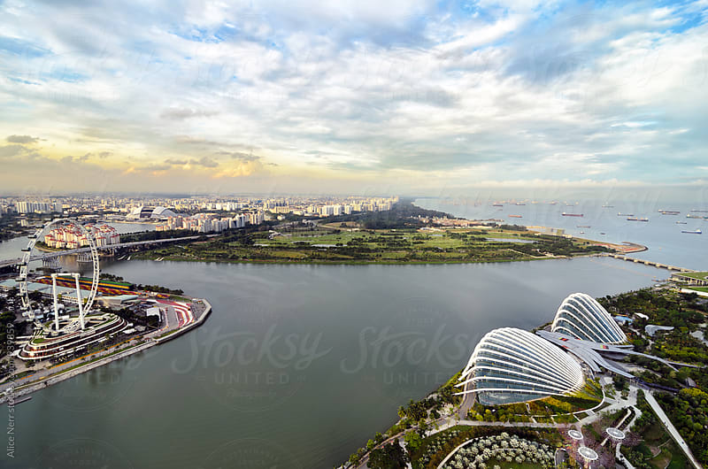 Aerial view to Singapore at the sunset by Alice Nerr for Stocksy United