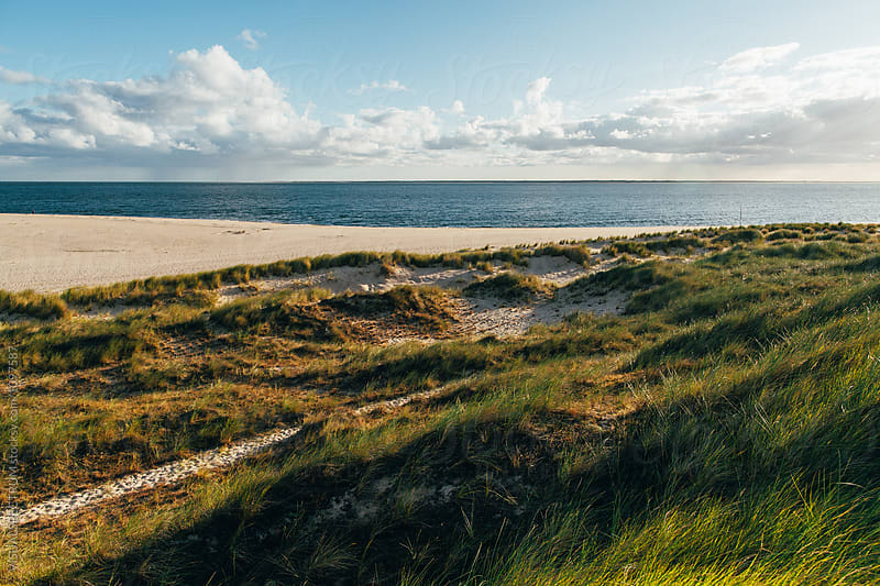 Sandy North Sea Beach in Sylt (Germany) by Julien L. Balmer for Stocksy United