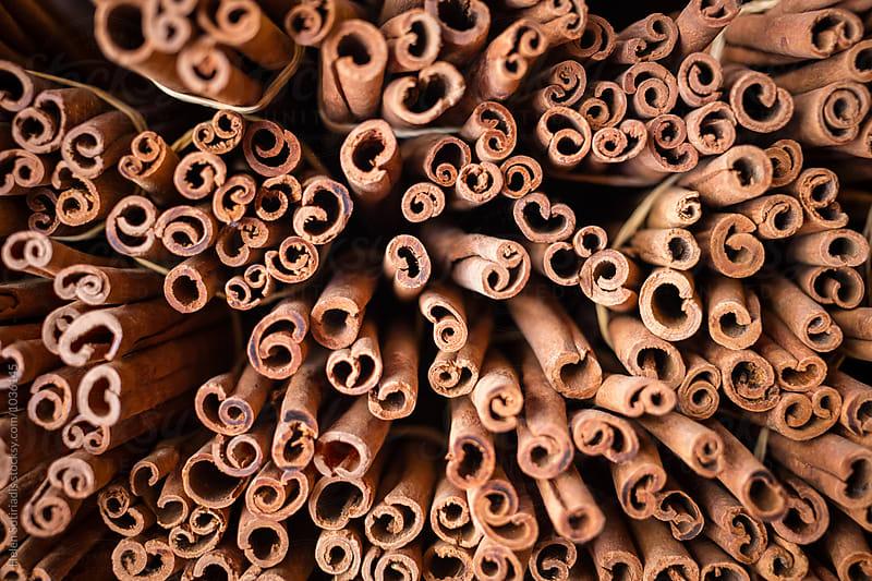 Cinnamon by Helen Sotiriadis for Stocksy United
