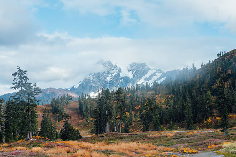 Mount Shuksan And Surrounding Subalpine Forest  by Luke Mattson for Stocksy United
