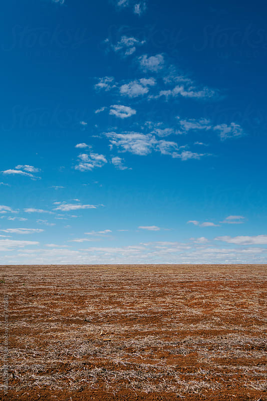 Barren Countryside Background by Julien L. Balmer for Stocksy United